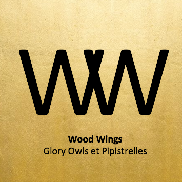 Wood Wings